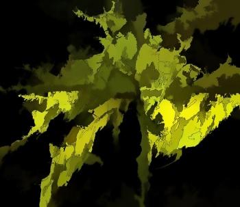 Spanish Moss.jpg