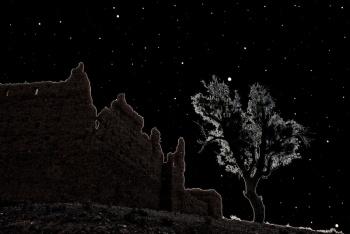 Casbah Night 525.jpg