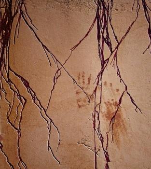 Casbah Wall 525.jpg