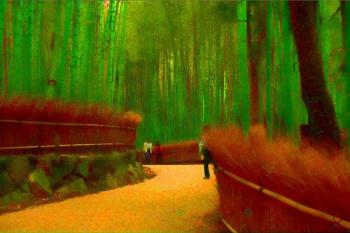 01 Bamboo Forest.jpg