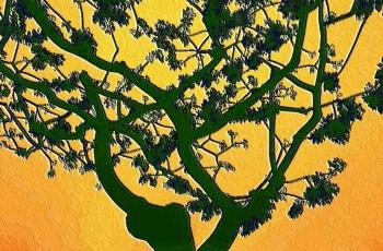 16 Tree Of Life.jpg