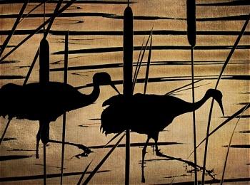 Sand Hill Cranes.jpg